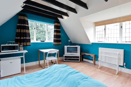 Large semi-rural double room with en-suite - Burnham - Bed & Breakfast