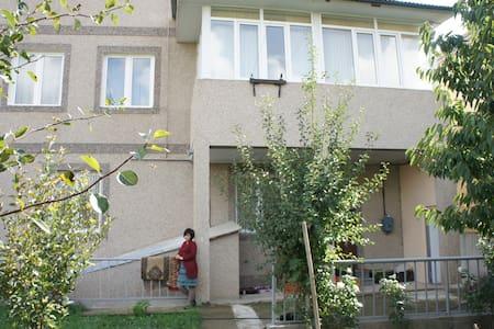 Великолепный дом в Ереване - Ptghni - Dom