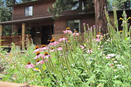 Mt. Elden Cozy Private Space *Sleeps2*1 Queen - Flagstaff