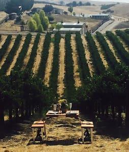 Vineyard Farmhouse - Paso Robles - Casa