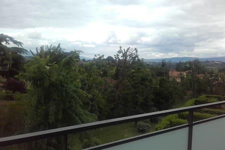 Appartement au calme sud de Lyon - Appartement