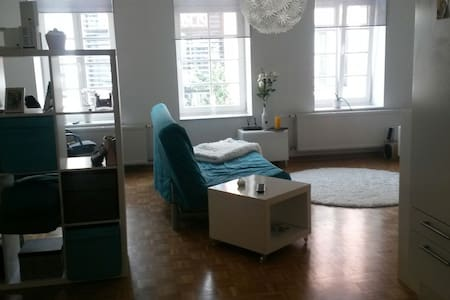 Gemütliche 1 Zimmer Wohnung Zentral - Apartamento