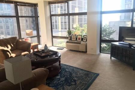 2 bedroom apartment in Gold Coast - 芝加哥 - 公寓