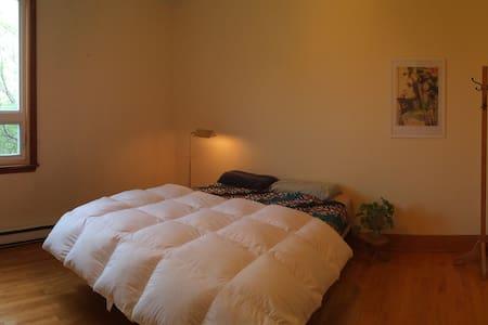 Chambre dans un spacieux logement du centre-ville - Daire