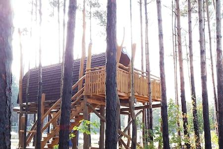 Baumhaus mit Seeblick - Senftenberg - Hus i træerne