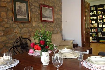Marquesa, 10. Vivienda del siglo XIX en Asturias. - Pola de Siero