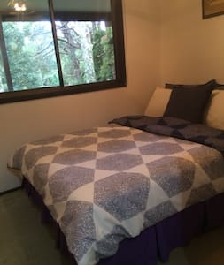 Rainforest Retreat - Springbrook - Bed & Breakfast