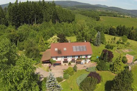 gite de la pieviche - Provenchères-sur-Fave - Lägenhet