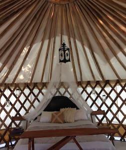 Mongolian Yurt & Tiny House on Organic Farm - Lucknow - Iurta