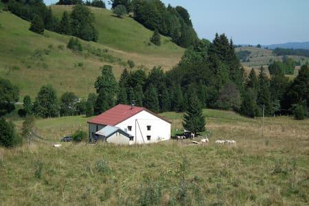 maison indépendante dans le parc du Haut-Jura - Huis