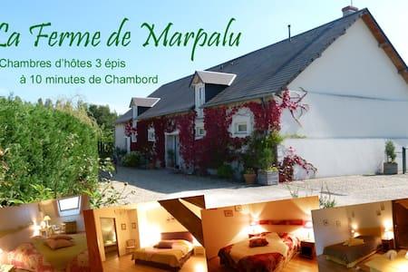 Chambre Colvert pour 4 - Chambord à 10mn - La Ferté-Saint-Cyr - Bed & Breakfast