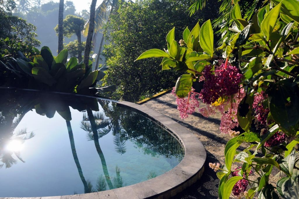 swimming pool and its magical aura