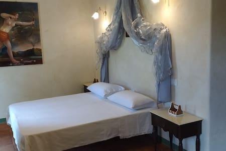Ginestra,accogliente camera in agriturismo toscano - Andet