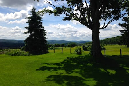 Awesome 4 BR Farmhouse on 55 acres - Cooperstown