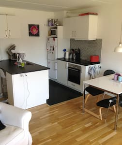 Big 2-rooms appartment close to Copenhagen Zoo - Apartment