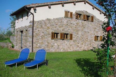 Tuscany  Chianti Villa Apartments - Castelnuovo dei Sabbioni - Villa