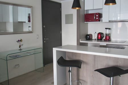 Beautiful one-room apartment , fully equipped. - Las Condes - Apartment