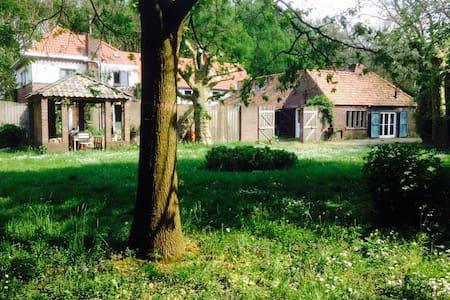 Guesthouse - Ravenstein - Cottage