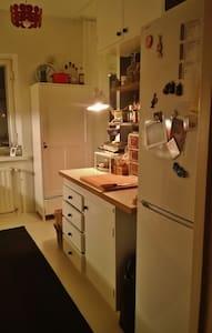 Cozy guestroom near center - Daire