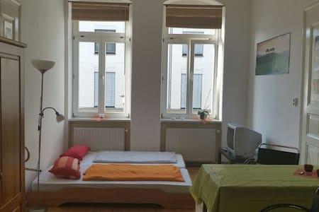 Schönes Zimmer in Altbau in Strehlen - Wohnung