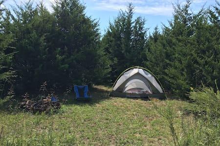 """Cedar Trails Campsite #1 """"Cozy Pines"""" in South OP - Sátor"""
