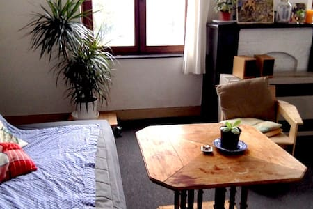 Big room two steps from Saint Gilles's Parvis! - Saint-Gilles