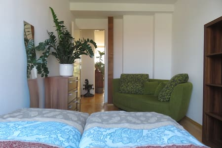 Cozy room in comfortable 180qm flat w. big terrace - Berlino - Appartamento