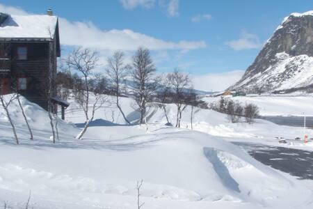 Mountain apartment, ski in-ski out