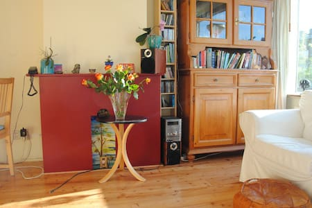 Friendly appartment near centre - Daire