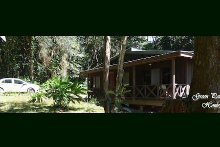 """""""La Perezosa"""" a Green Paradise Home"""