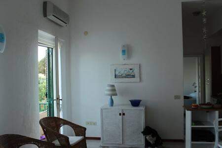 appartamento sul mare di ansedonia - Ansedonia - Apartment
