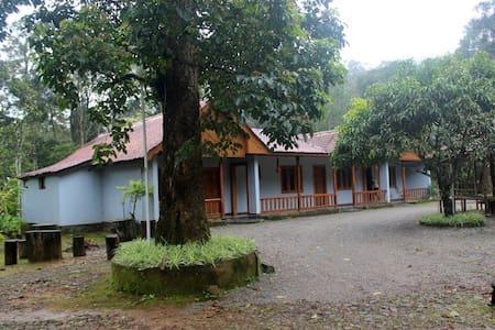 Cardamom Plantation Farm House Bungalow - Munnar - Bungalow