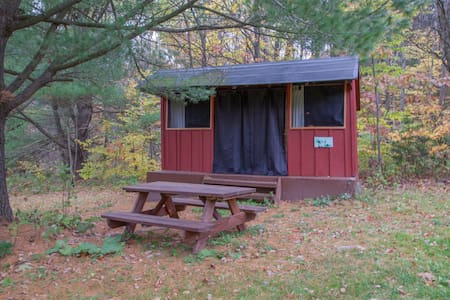 Rustic Cabin under the Pines - Freeville - Kabin
