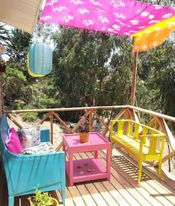 Casa en Pichidangui - House
