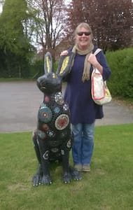 Hares in  a roman town -  Come and find out more - Hus