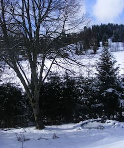 Haus Tannengarten - Eisenbach (Hochschwarzwald) - Condominium