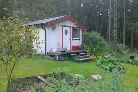Lake-view cabin in the wood, near airport and city - Blockhütte