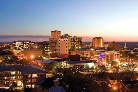 True Downtown Flat II - Tallahassee