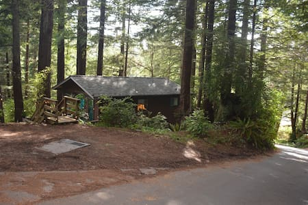 Relaxing Cabin in Redwoods Humboldt - Cottage