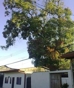 Liberia , Guanacaste, ciudad blanca - Dormitorio compartido