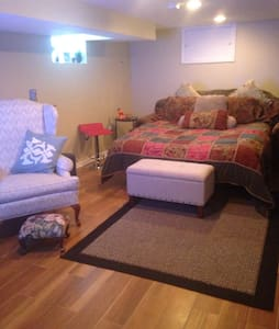 Near Midway Upscale Basm Apartment - Chicago - House