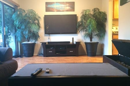 DC/Northern Virginia Area Home Away - Appartement