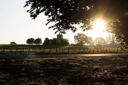 Domaine McDougall with Vineyard Views! - Dayton - Guesthouse