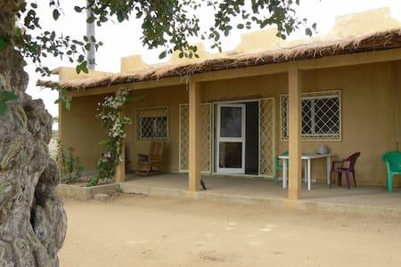 La Maison du Marigot - Hus