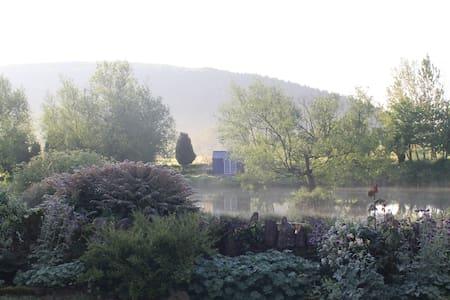 Dee's Cottage at Brinsop - Pis