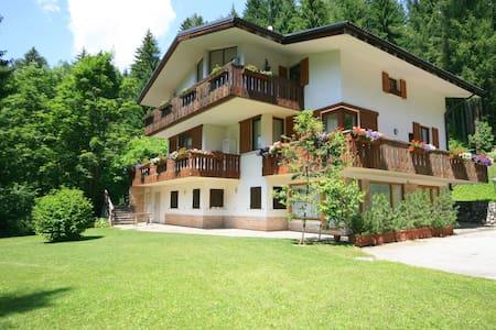VILLA LICIA bilocale - Wohnung