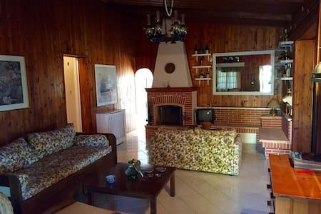 Wooden Villa with amazing view and garden - Villa