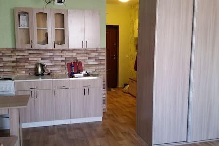Уютная квартира в центре, недалеко от аэропорта - Irkutsk - Flat