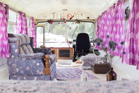 Fingal's Original Gypsy Vintage Bus - Andre
