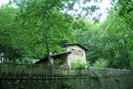 Chalet - Metato on the Alpi Apuane - Careggine - Casa